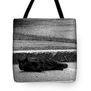 Kitty In The Street Black And White Tote Bag