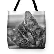 Kitty Nap Tote Bag