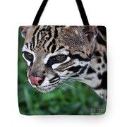 Kitty Ocelot 1 Tote Bag