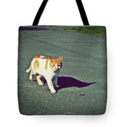 Kitty On The Prowl Tote Bag