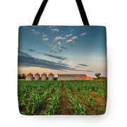 Knee High Sweet Corn Tote Bag