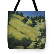 Knights Ferry 1 Tote Bag