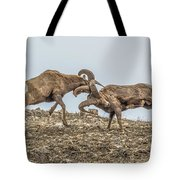 Knocked Silly Tote Bag