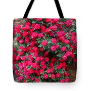 Knockout Red Rosebush Tote Bag