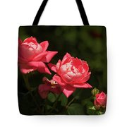 Knockout Roses Tote Bag