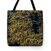 Knotted Wrack Seaweed Floating Atop Tote Bag