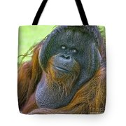 Knowing Smile Tote Bag