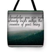 Knowledge You Seek Tote Bag