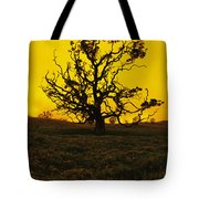 Koa Tree Silhouette Tote Bag