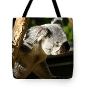 Koala Bear 2 Tote Bag