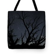 Kodachrome Basin Night Sky 2963 Tote Bag