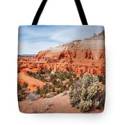 Kodachrome Basin State Park Panorama Tote Bag