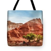 Kodachrome Park Colorful Desert Beauty In Spring. Tote Bag