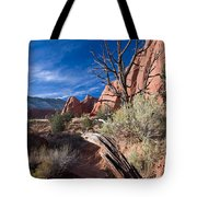 Kodachrome Sunset Tote Bag