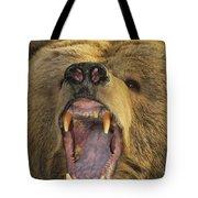 Kodiak Bear Ursus Arctos Middendorffi Tote Bag