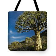 Kokerboom Tote Bag