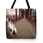 Kokkie On The Autumn Alley Of Rhoon Tote Bag