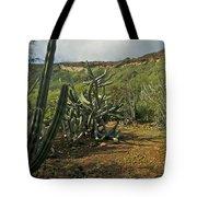 Koko Caldera Tote Bag