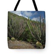 Koko Crater Cacti Tote Bag