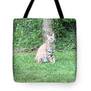 Ks Bobcat Tote Bag
