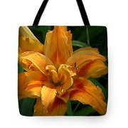 Kwanzaa Lily Watercolor Tote Bag