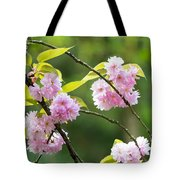 Kwanzan Cherry Bossom Flowers Tote Bag