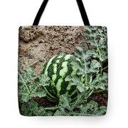 Ky Watermelon Tote Bag