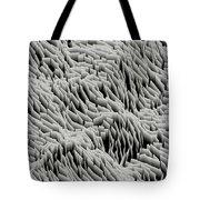 L6-24-212-209-255-3x3-1200x1200 Tote Bag