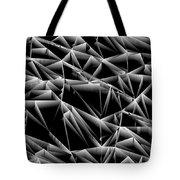 L6-94-169-255-249-4x3-1600x1200 Tote Bag