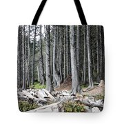 La Push Beach Trees Tote Bag