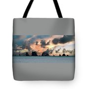 La Push Lineup Tote Bag