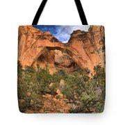 La Ventana Arch Tote Bag