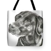 Lab Charcoal Drawing Tote Bag