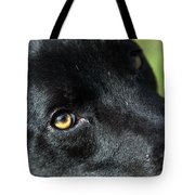 Lab Mix Tote Bag