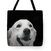 Labrador Smiling B W Tote Bag