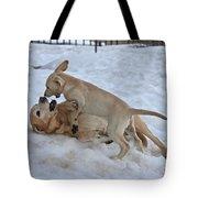 Labradors Tote Bag