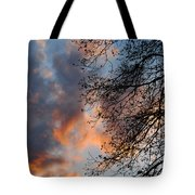 Lace In The Sunset Tote Bag