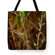 Lacewing Tote Bag