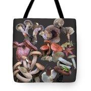 Lactarius 1 Tote Bag