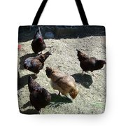 Ladies Of The Pen Tote Bag