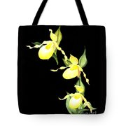 Ladies Trio Tote Bag