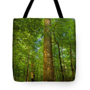 Lady And The Tree Tote Bag