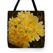 Lady Banks Rose With Sepia Background Tote Bag