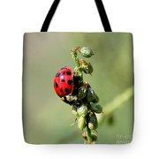Lady Beetle Tote Bag
