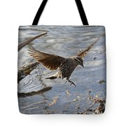 Lady Blackbird Tote Bag