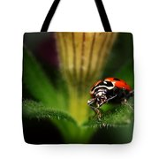 Lady Bug 1 Tote Bag