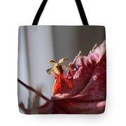 Lady Bug Flight Tote Bag