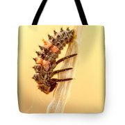 Lady Bug Larva Tote Bag
