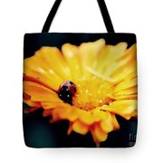 Lady Bug Walking The Line Tote Bag