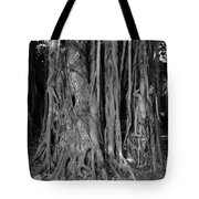 Lady In The Banyans Tote Bag
